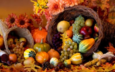 Tips for Living in a Disordered Society: Why, this Year, We Need Thanksgiving More than Ever.